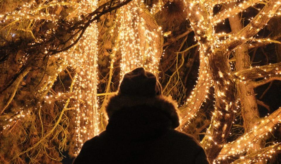 Weihnachtslichter: Wo Berlin dieses Jahr am schönsten leuchtet